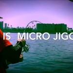 話題の釣法!?「マイクロジギングとは」どんな釣りかが5分で分る動画