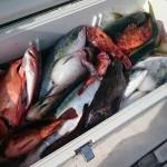 潮汐を意識して釣りに挑もう!  満潮・干潮による潮の動きと釣りの関係とは?
